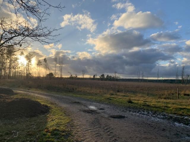 Zonsondergang op de Mechelse Heide